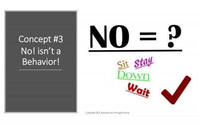 No Isn't A Behavior!