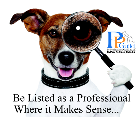 Equipment-Used-for-the-Management-Training-and-Care-of-Pets